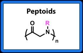 Peptoids